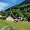 Verlängertes Kletter-Wochenende Tessin 2018